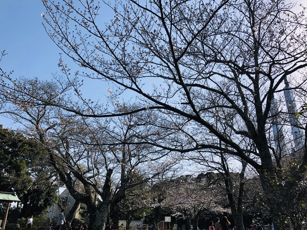 oodayamakouen